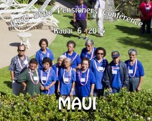 maui group 8x10